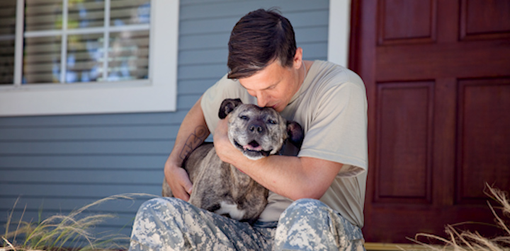 Male veteran sitting porch hugging gray pit bull type dog looking camera