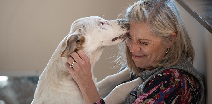 Light colored dog licking the face of a woman
