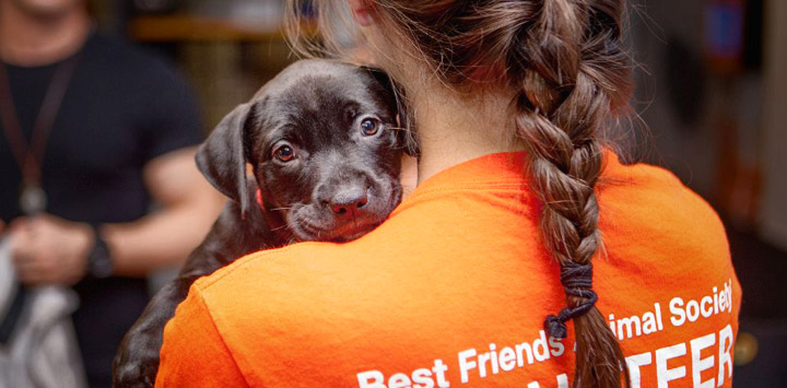 Female in orange shirt with braid holding black puppy looking over her shoulder