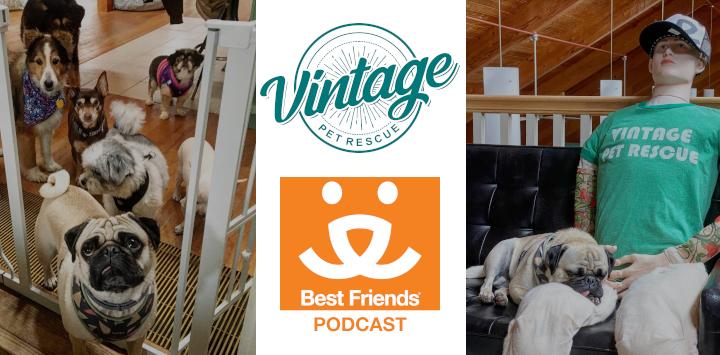 Vintage Pet Rescue - Best Friends Podcast